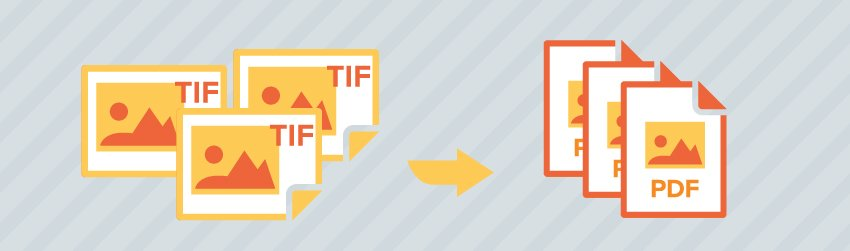 PDF vs. TIFF – which is the right format for your document scanning needs?