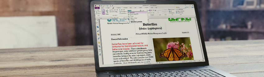 Best practices for ensuring a PDF Document is ready to be published