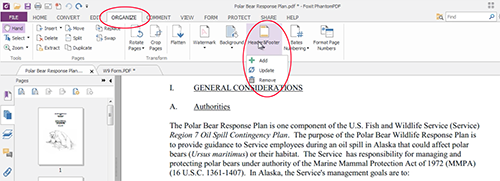First, click the organize tab, then Header and Footer, as you'll see circled below.