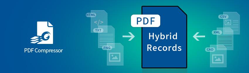 Hybrid Records: Optimizing Hybrid Document Capture