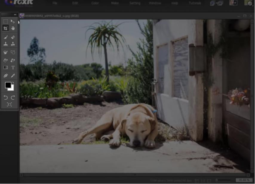 the basics of foxit studio photo-1