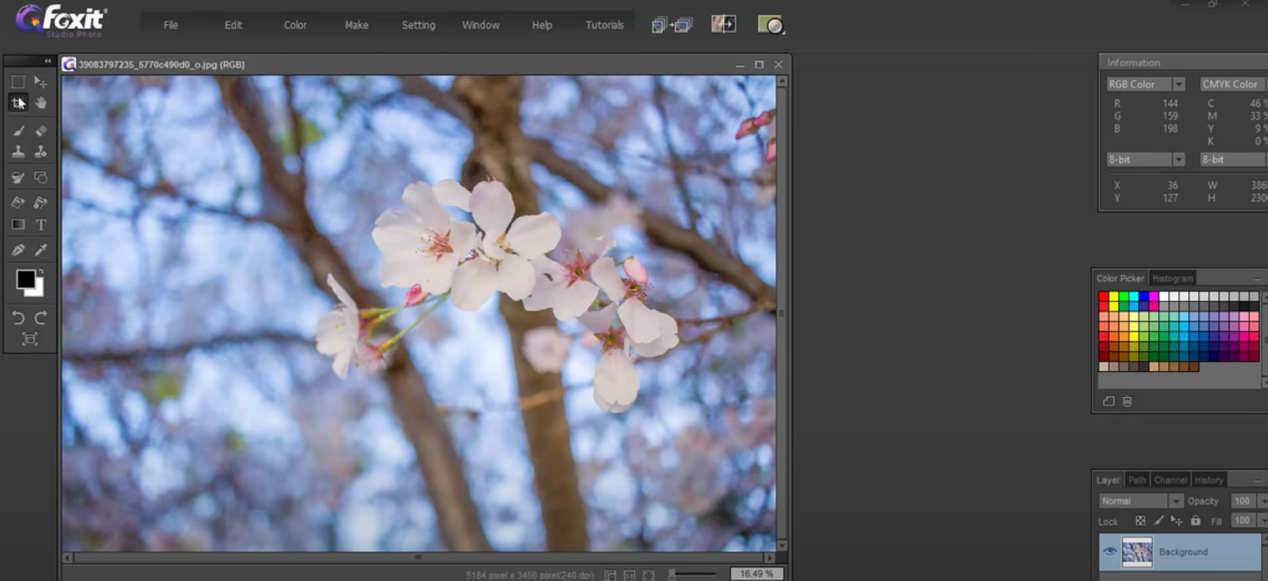 crop and resize images with Foxit Studio Photo - 2