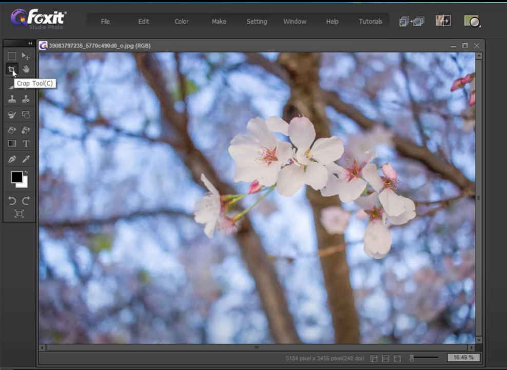 crop and resize images with Foxit Studio Photo - 3