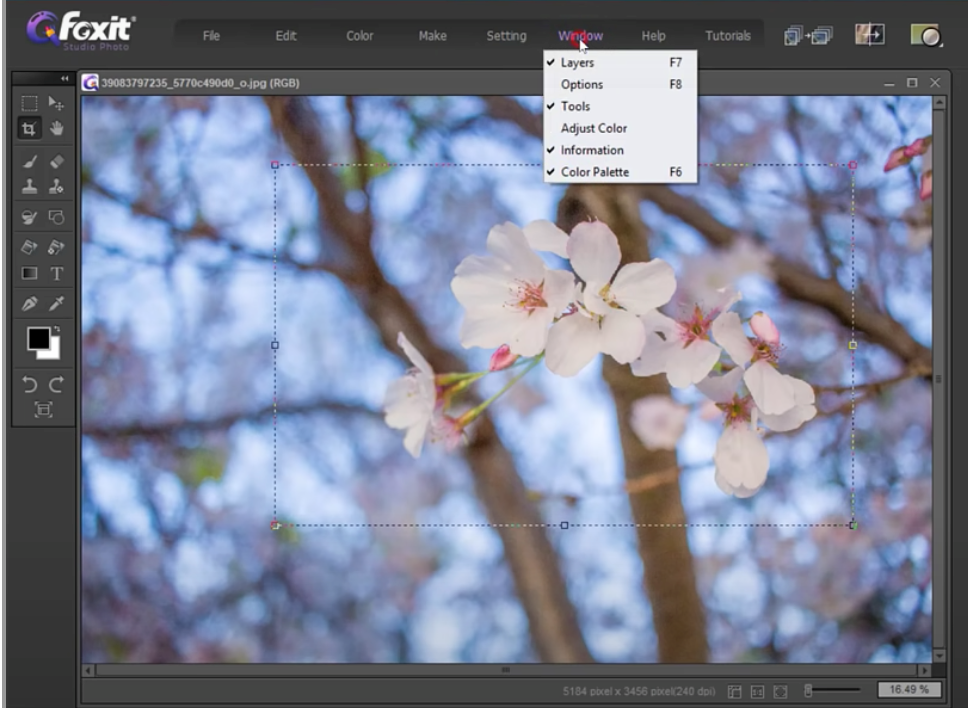 crop and resize images with Foxit Studio Photo - 5