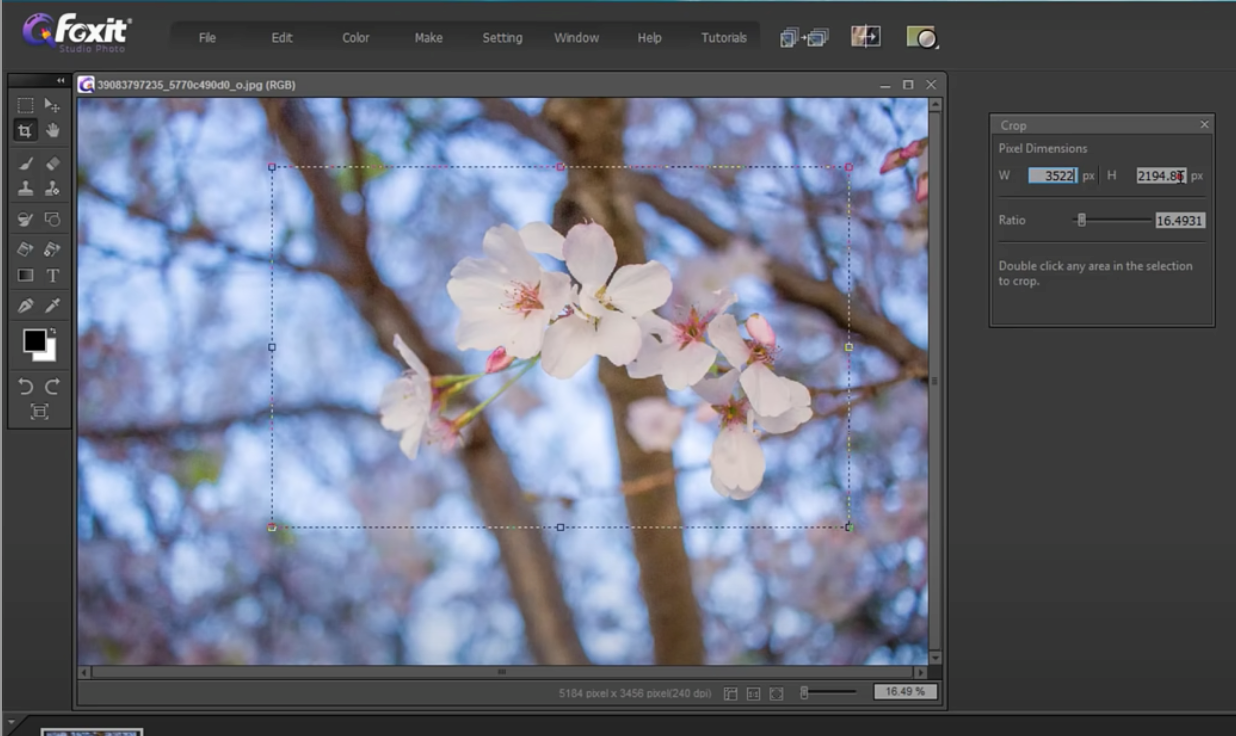 crop and resize images with Foxit Studio Photo - 6