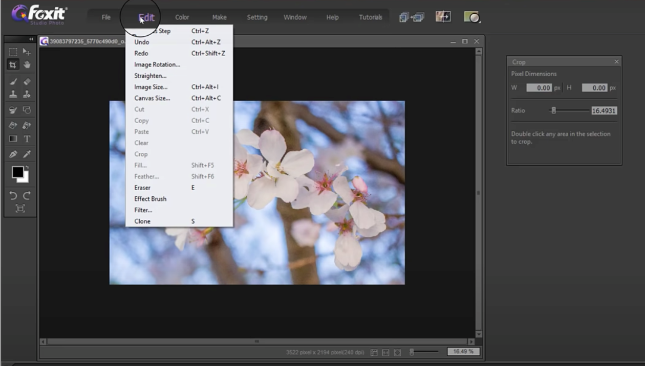 crop and resize images with Foxit Studio Photo - 7