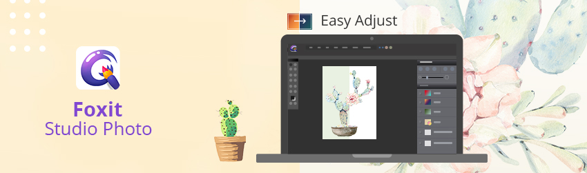 how-to-edit-photos-automatic-enhancement-blog-image
