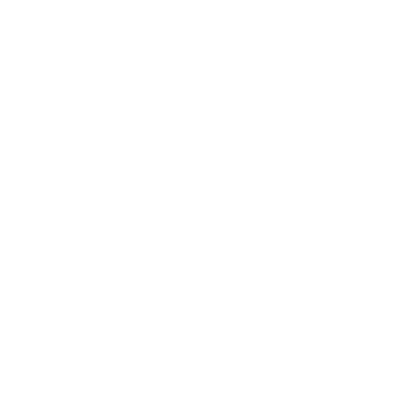 Maestro Recognition Server OCR