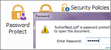 Protect PDF with Document Encryption