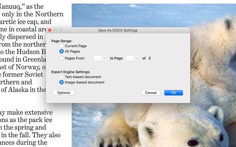 Create and Export PDF